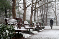 Snow Benches; Arlington, Virginia